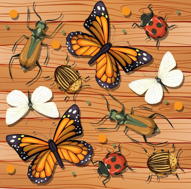 Set of different insects on wooden wallpaper background