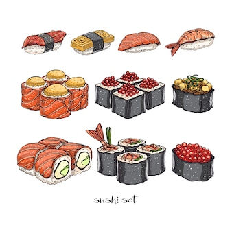 Set of different kinds of delicious rolls and sushi. hand-drawn illustration