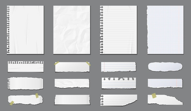 Set of different notebook pages and pieces of torn paper