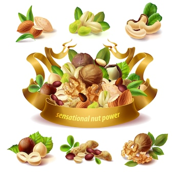 Set of different nuts, hazelnuts, peanuts, almond, pistachio, walnuts, cashew