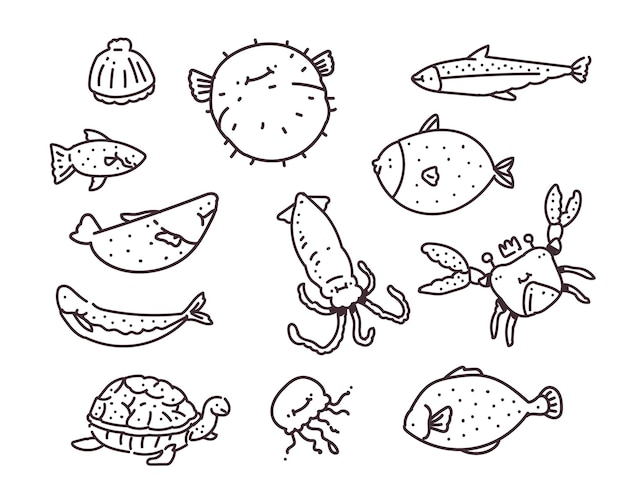 Set of different sea fish . hand drawing . sea fish doodle  illustration
