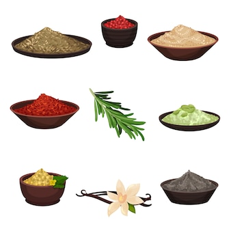 Set of different seasonings. organic fragrant ingredients for flavoring dishes. cooking theme
