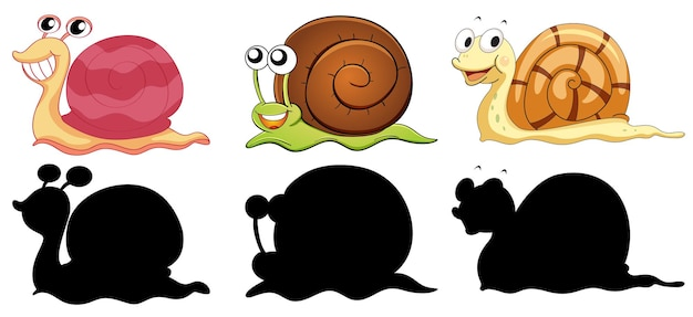 Set of different snails with its silhouette on white background