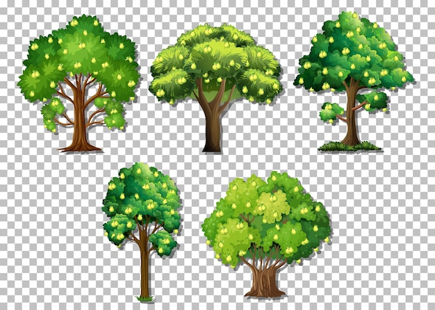 Set of different trees on transparent background