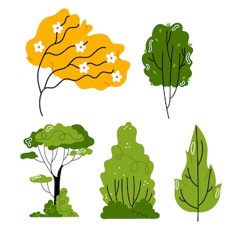 A set of different types of trees  hand drawn illustration