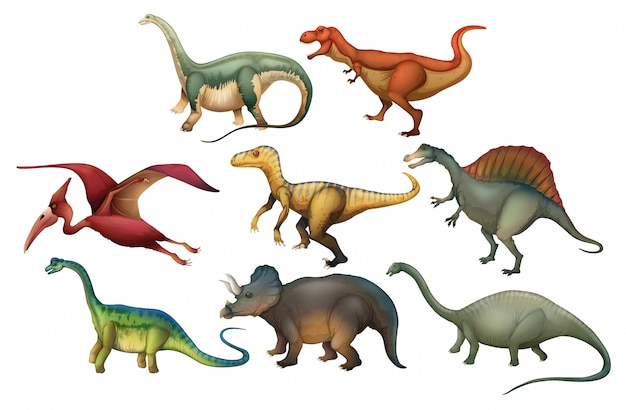 A set of diffrent dinosaurs