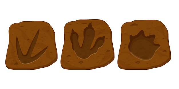 Set dinosaur fossil paw print reptile foot trail in cartoon style