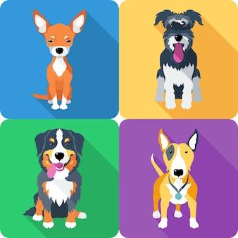 Установите значок собаки плоский дизайн бультерьер и чихуахуа