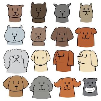 Set of dog