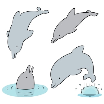 Set of dolphin