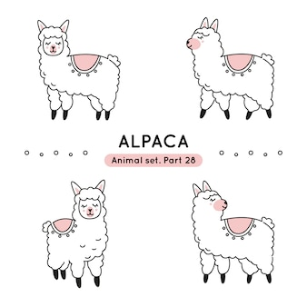 Set of doodle alpacas in various poses isolated