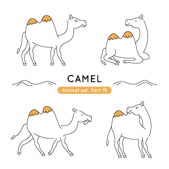 Set of doodle camels in various poses isolated