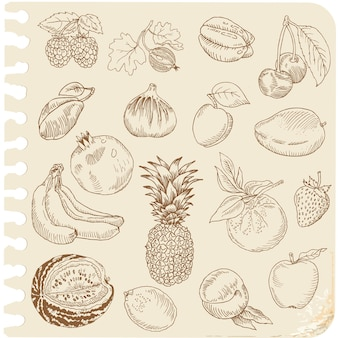 Set of doodle fruits - for scrapbook or design - hand drawn