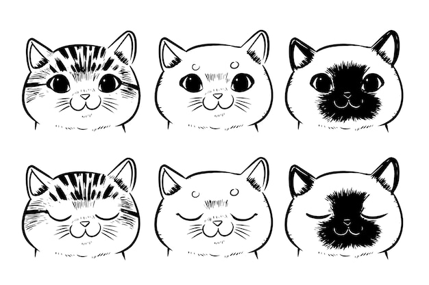 Set of drawing cat faces isolated on white background