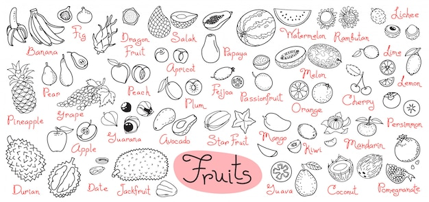 Set drawings of fruits for design menus, recipes and packages product.  illustration