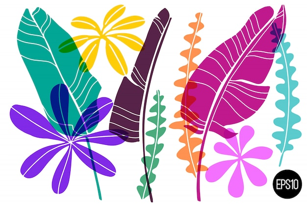Set of drawn tropical leaves.