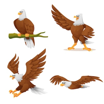 Set of eagle in various poses cartoon illustration