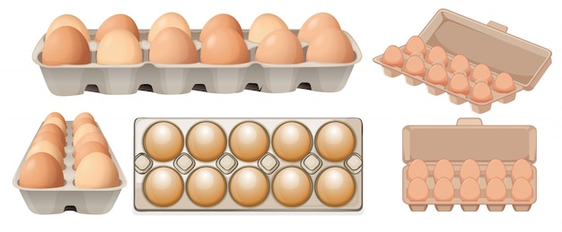 Set of egg in different angles