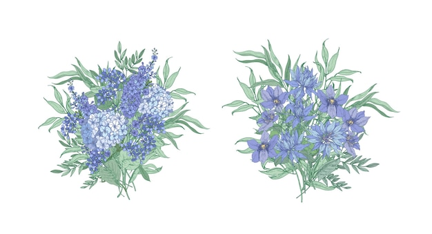Set of elegant bouquets made of beautiful blue wild blooming flowers and flowering herbs isolated