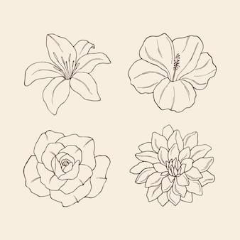 Set of elegant hand drawn flowers