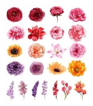 여름에 요소 꽃을 설정