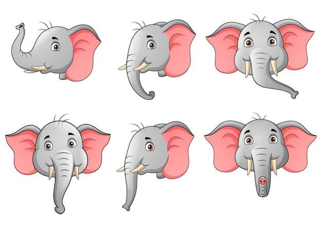 Set of elephant head character cartoon   illustration