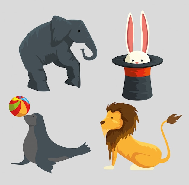 Set elephant with rabbit inside hat and seal with lion wild animals