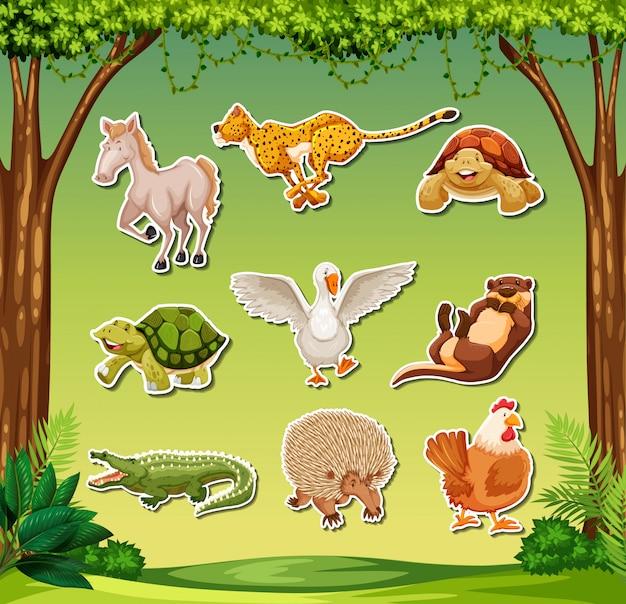 Set of exotic animal sticker