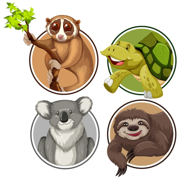 Set of exotic animals in circle banner