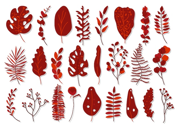 Set of exotic red tropical leaf. hand drawn different abstract jungle floral botanic element leaves palm, monstera for decorative composition or invitation card isolated on white Premium Vector