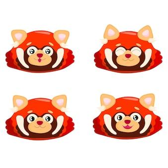 Set of face cute red panda little panda ailurus fulgens on white background