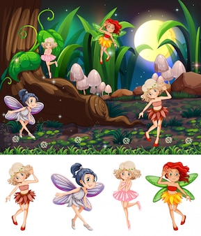 Set of fairy night scene