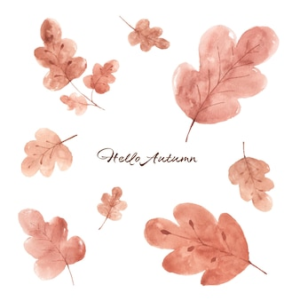 Set of fall leaves watercolor hand-painted isolated on white background. illustration perfect for design decorative in the autumn festival. greeting cards, invitations, posters.