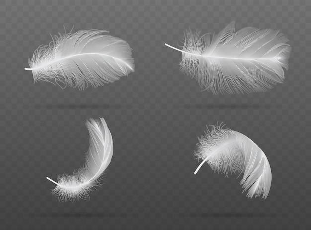 Set of falling white bird feather on a dark background