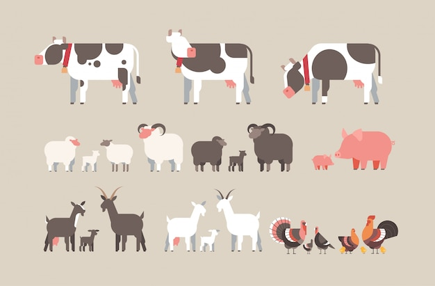 Set farm animal cow goat pig turkey sheep chicken icons different domestic animals collection farming