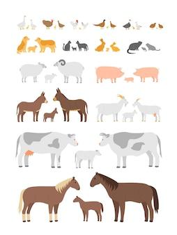 Set of farm animals and birds