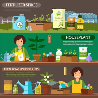 Set fertilizing houseplants and fertilizer spikes.