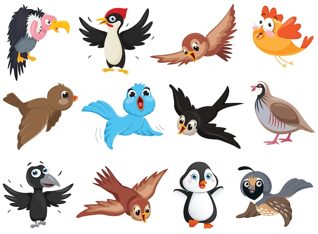Set ff funny bird characters