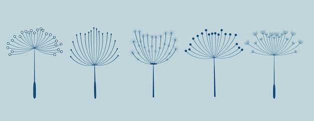 Set of five dandelion flowers seeds Free Vector