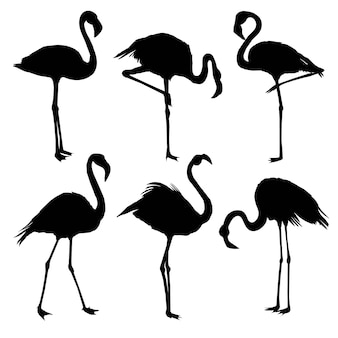 Set of flamingo silhouettes