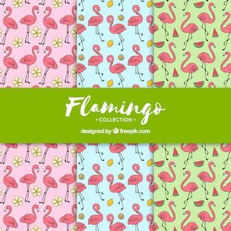 Set di modelli di fenicotteri con piante e frutti