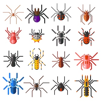 Set of flat spiders cartoon colored vector illustration isolated
