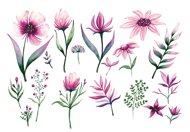 Set of floral design elements in watercolour style