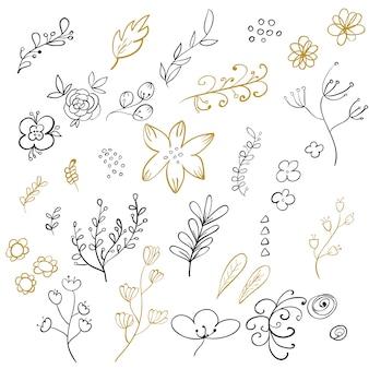 Set of floral elements. vector illustration.