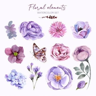 Set floral elements with watercolor