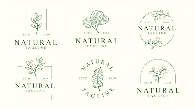 Set of floral logo template