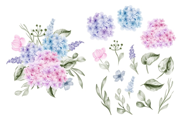 Set of flower hydrangea blue pink and leaf isolated clip-art