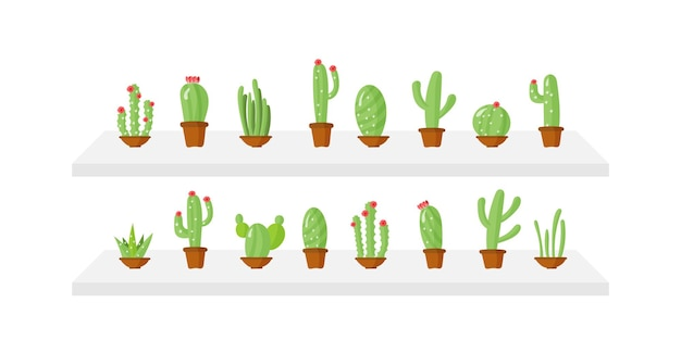 Set of flower pots with green plants. cactus in pots in cartoon style