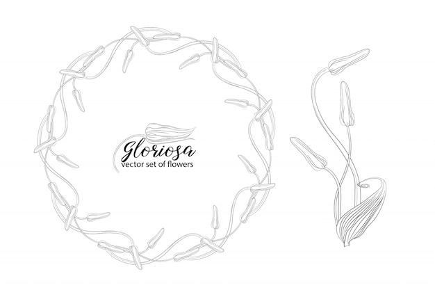 Set of flowers and beads glorasa gloriosa