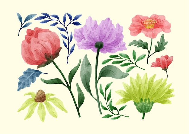 A set of flowers painted with watercolors to accompany various cards and greeting cards